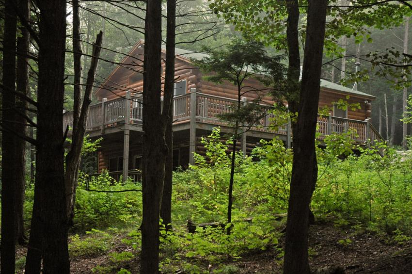 The exterior of a Northern Woods lynx cabin in the woods during the day.