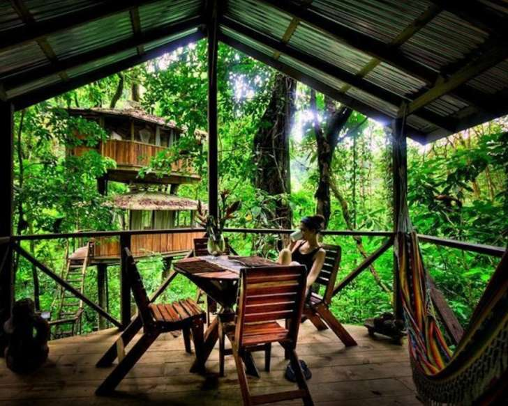 A woman is sitting at a wooden table and drinking coffee on the porch of a treehouse in a rainforest during the day.