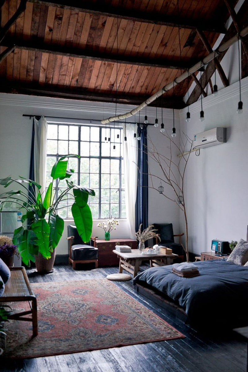 7 easy ways to fill your apartment with natural light for Room decor ideas with plants
