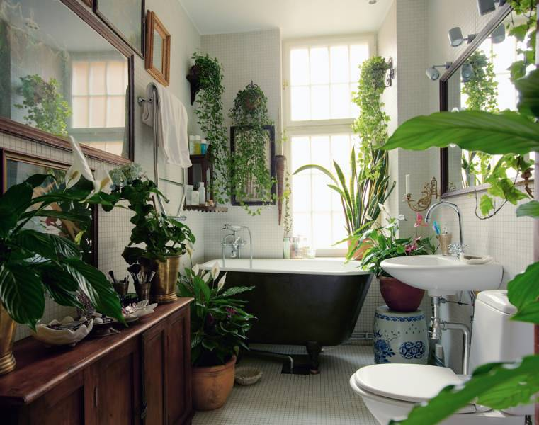 A tiny bathroom in a small apartment filled with houseplants in planters.
