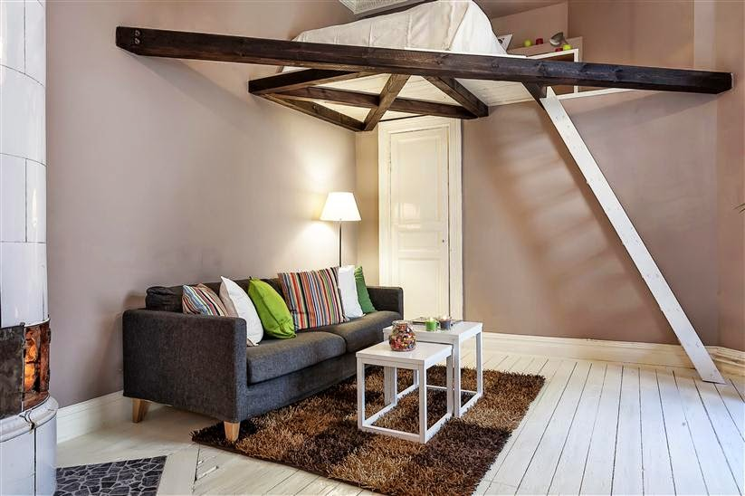A lofted bed with a ladder in a tiny apartment.
