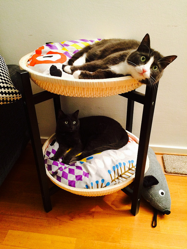 A DUKTIG IKEA hack that serves as cat beds for two cats.