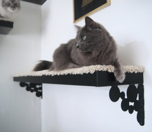 A black Lack shelf as a cat tree is one of many easy IKEA hacks for pets.