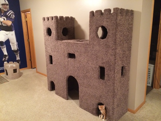 A kitty in a DIY cat castle made of carpet in a small apartment.