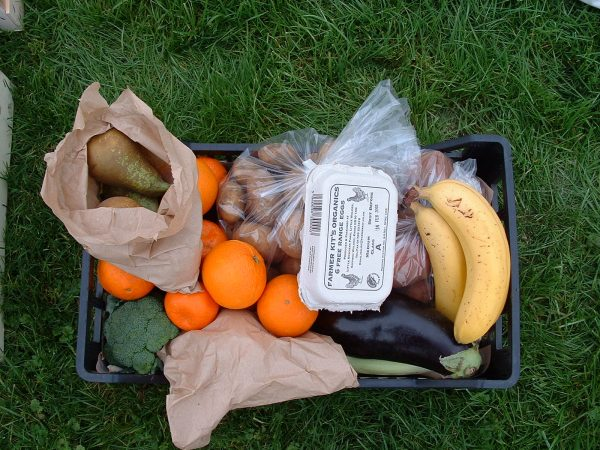 a black plastic crate is on the grass and storing oranges, potatoes, bananas, an eggplant, broccoli, and pears