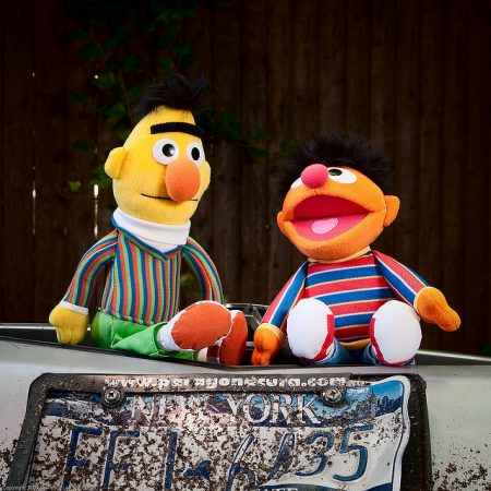bert and ernie from sesame street sitting on the ground and talking behind a new york license plate