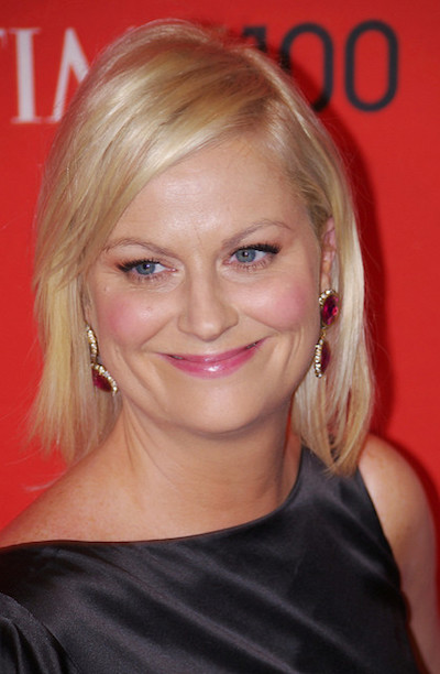 Amy Poehler tells us how she organizes her home