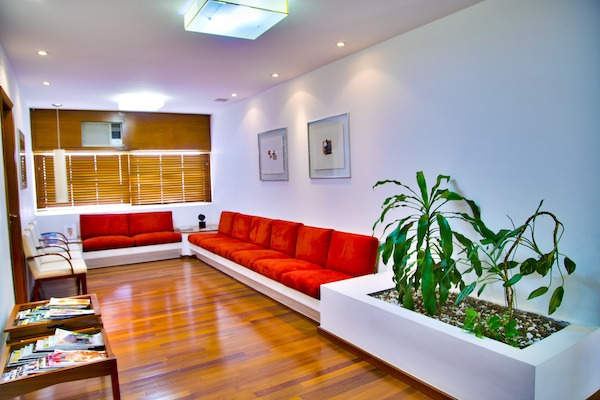 a red sofa and a houseplant in a living room