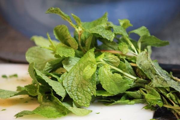 fresh mint grown indoors