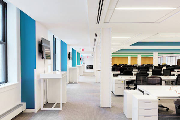 bright office walls in blue green gold and white