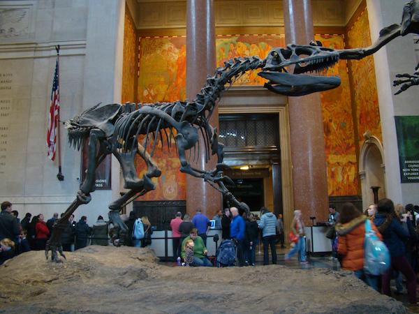 dinosaur at museum of natural history nyc