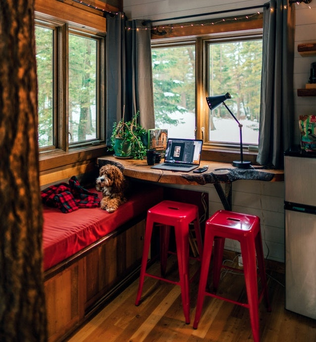 a warm nook by the window with a puppy snuggling in it