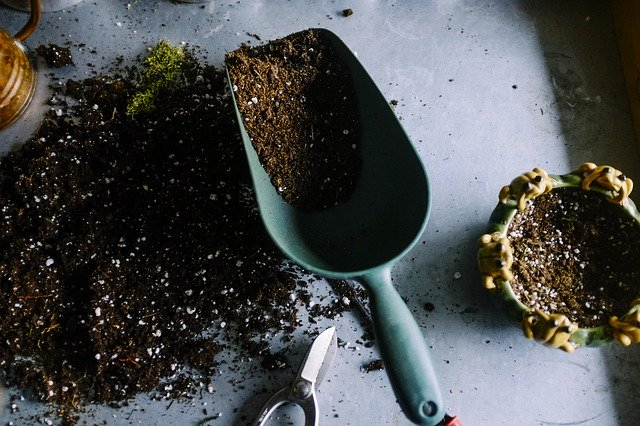 soil in a garden trowel