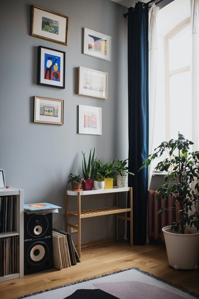 A home with plants and six pictures hanging off the wall