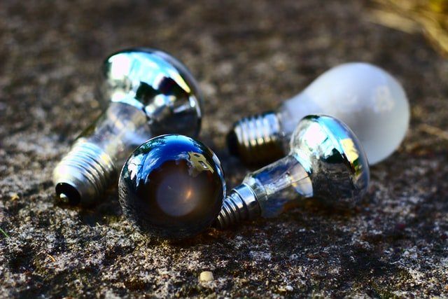 Three bulbs laying in soil.